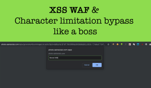 XSS WAF & Character limitation bypass like a boss